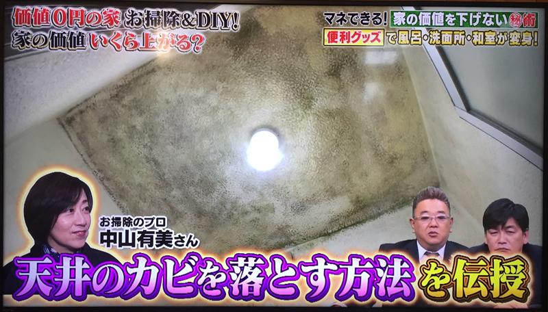 天井のカビを落とす方法